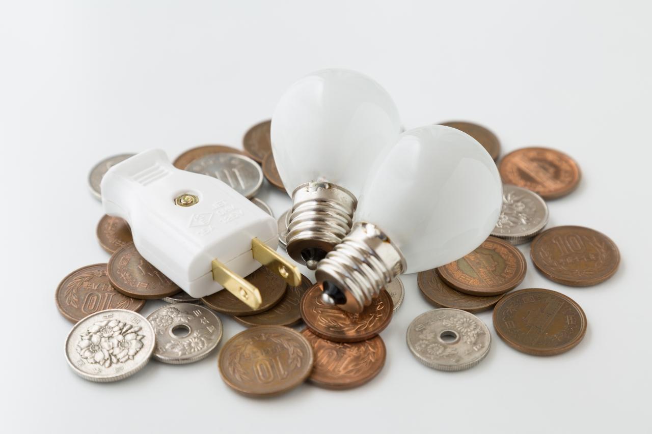 家庭の電気料金